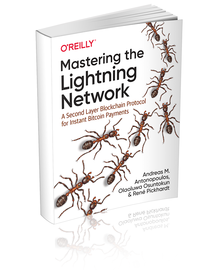 Mastering the Lightning Network